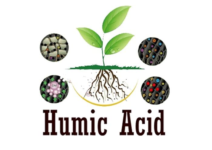 هیومیک اسید (Humic Acid) دقیقا چیست؟